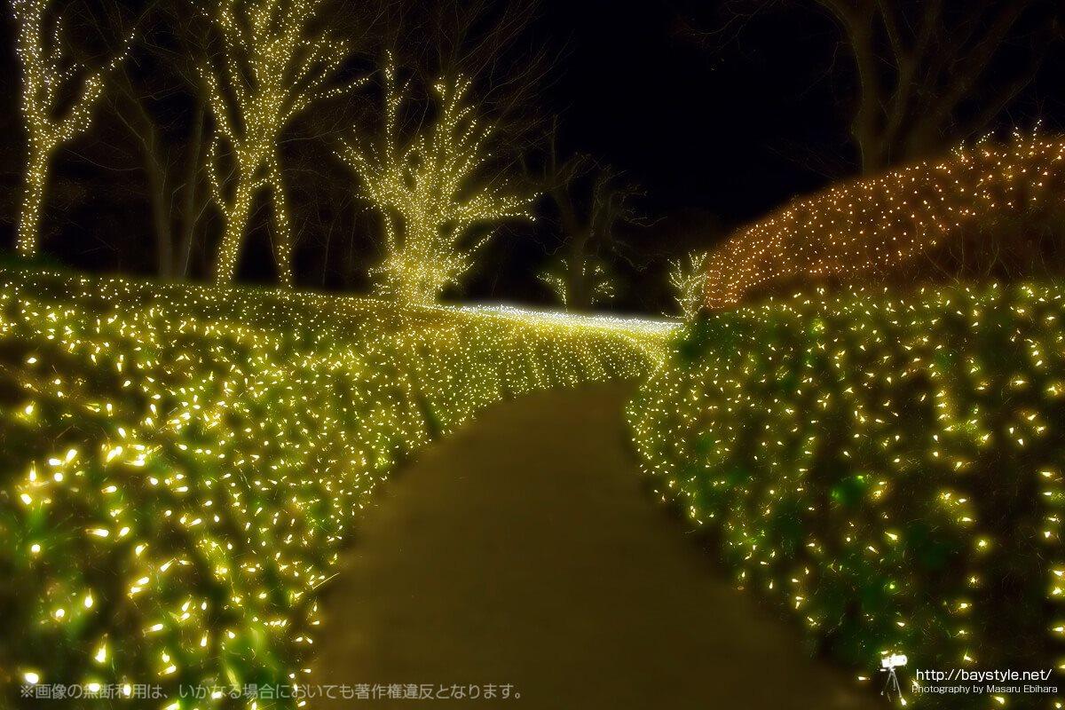 「iL CHIANTI CAFE 江の島」のすぐ側にある庭園