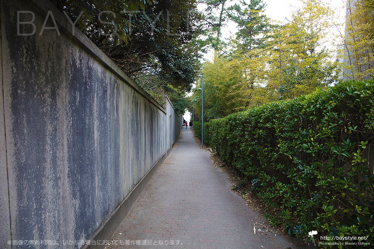神奈川県立近代美術館と、葉山しおさい公園の間にある一色海水浴場へと抜ける小道
