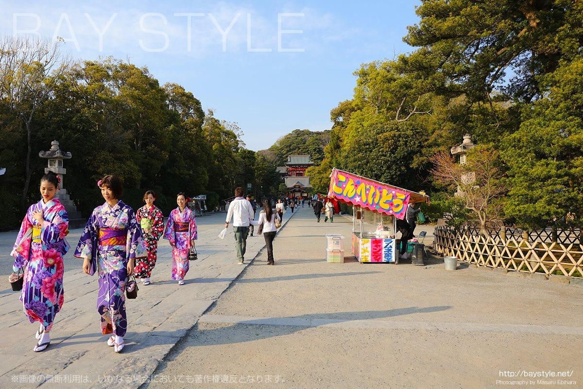 夏の鶴岡八幡宮