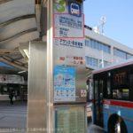 JR逗子駅、京急新逗子駅から森戸海岸、一色海岸へバスで行く方法