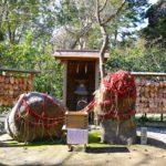 鎌倉で恋愛成就、縁結び祈願ができるお寺と神社巡り