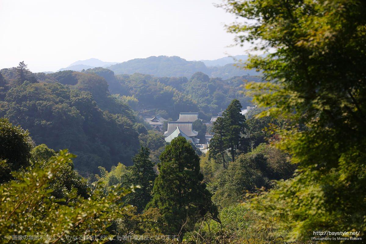 半僧坊から眺めた建長寺