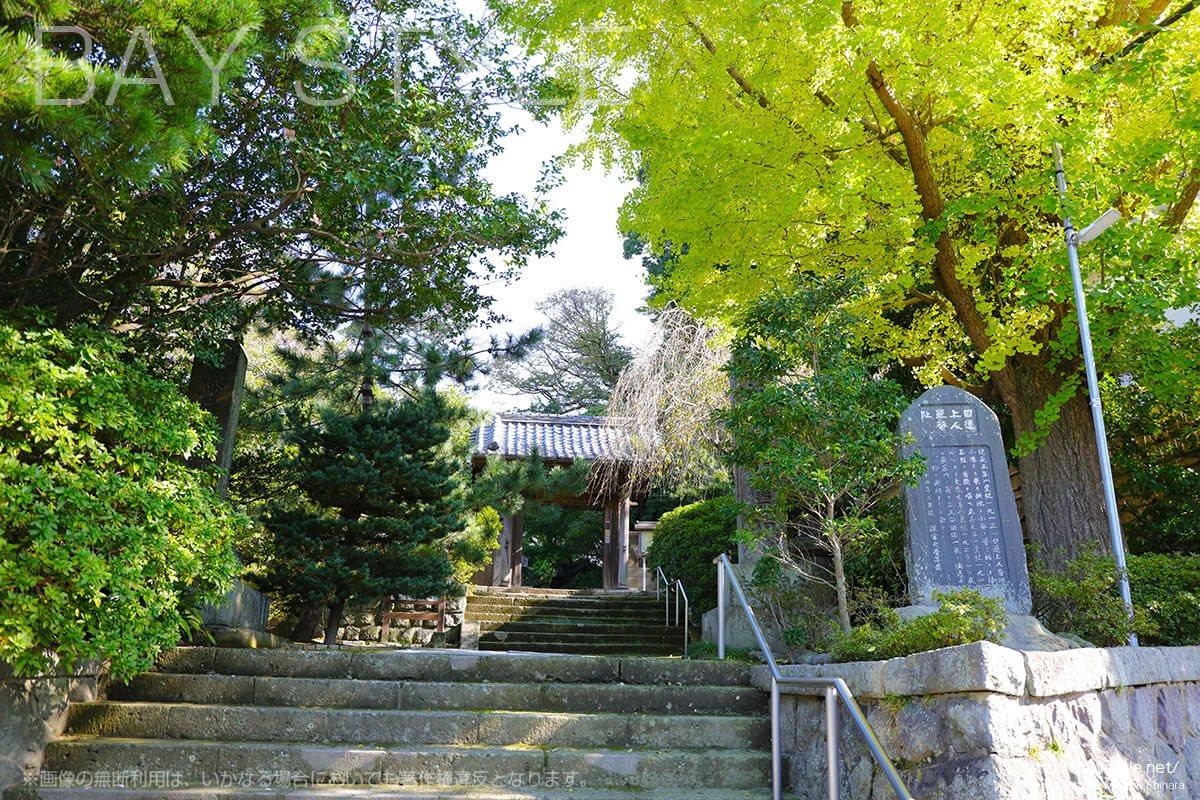 安国論寺の入口
