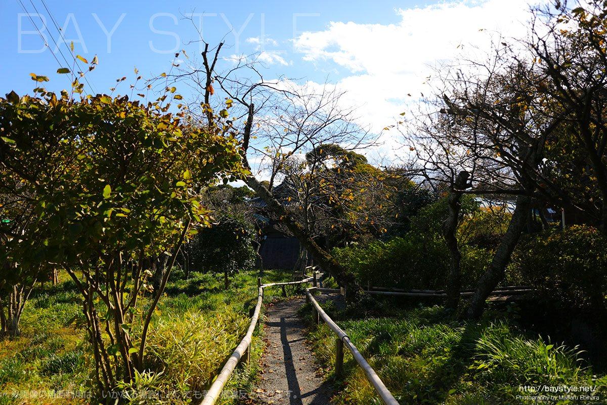 英勝寺の境内の自然