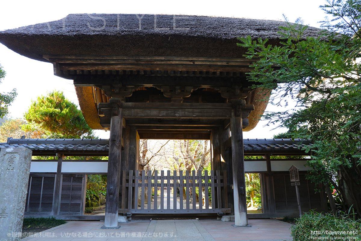 極楽寺は駅前の赤いポストと山門の綺麗なアジサイが目印
