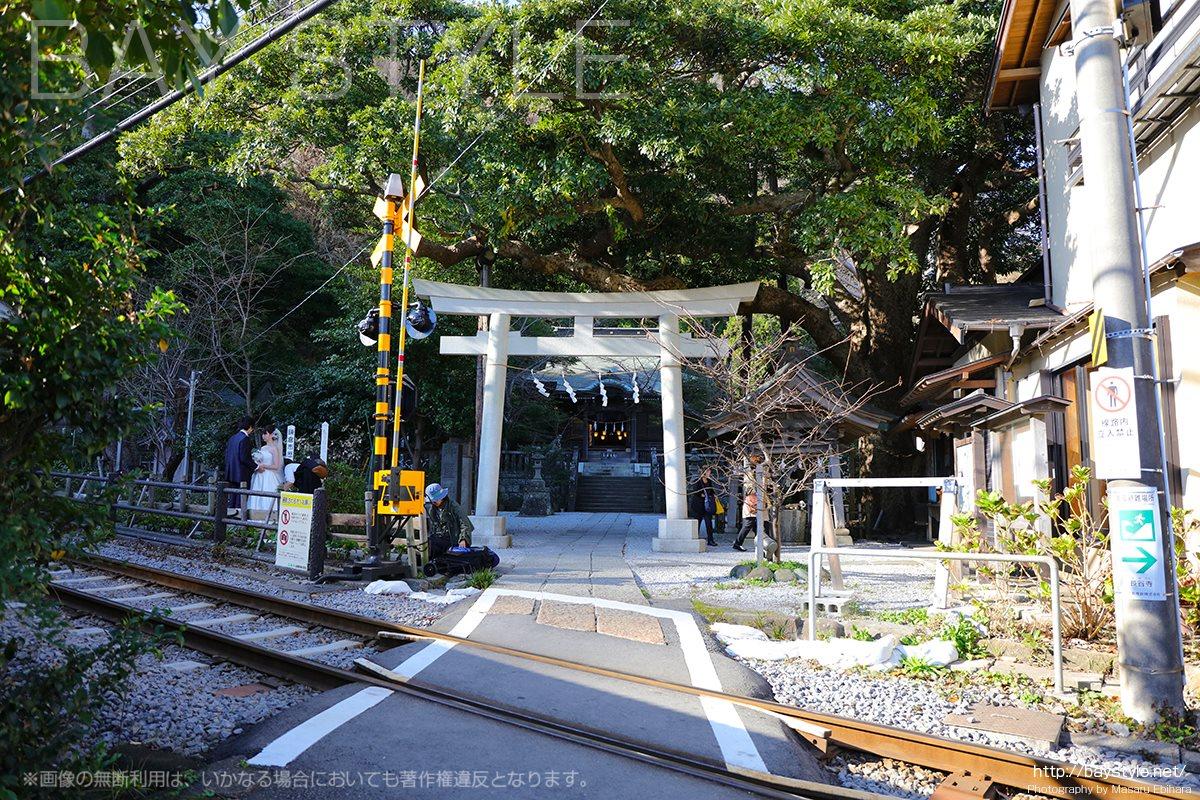 御霊神社の前で江ノ電と結婚記念写真を撮影する新婚夫婦