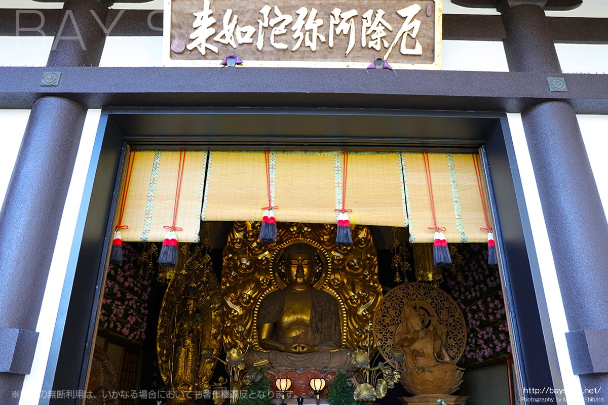 長谷寺の阿弥陀堂