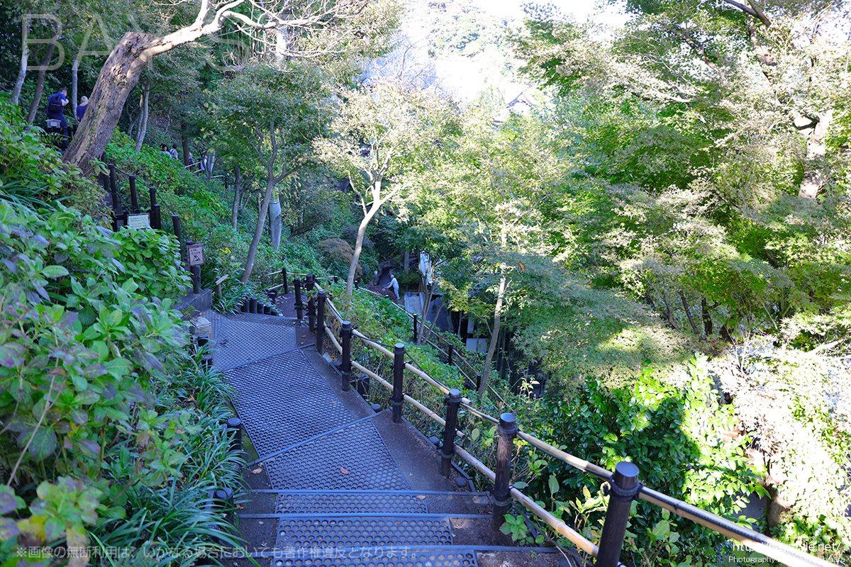 長谷寺の眺望散策路の下り階段