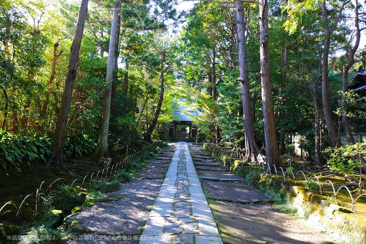 総門を入って、山門まで続く石畳の参道