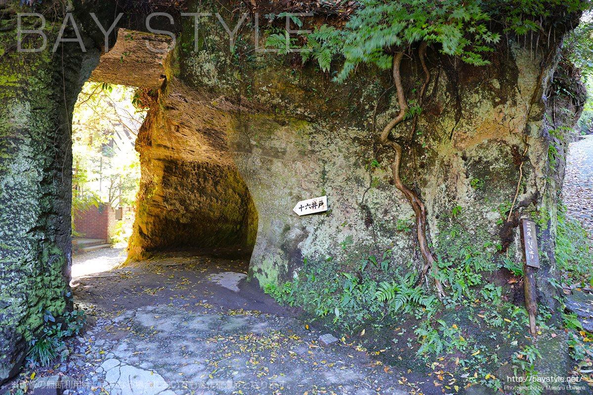 海蔵寺の十六ノ井戸へと続く道