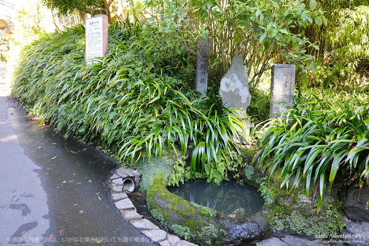 海蔵寺の底脱の井戸