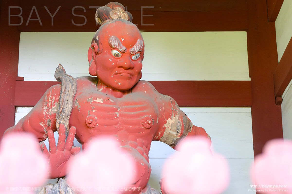 妙法寺の金剛力士