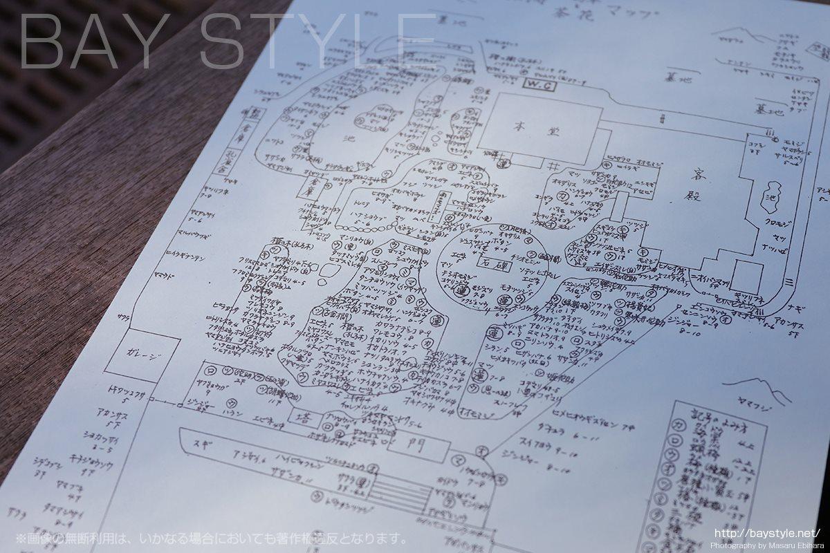 光則寺の手書き山野草、茶花マップ