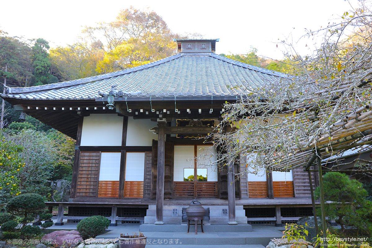 光則寺の手書き山野草、茶花マップがすごい