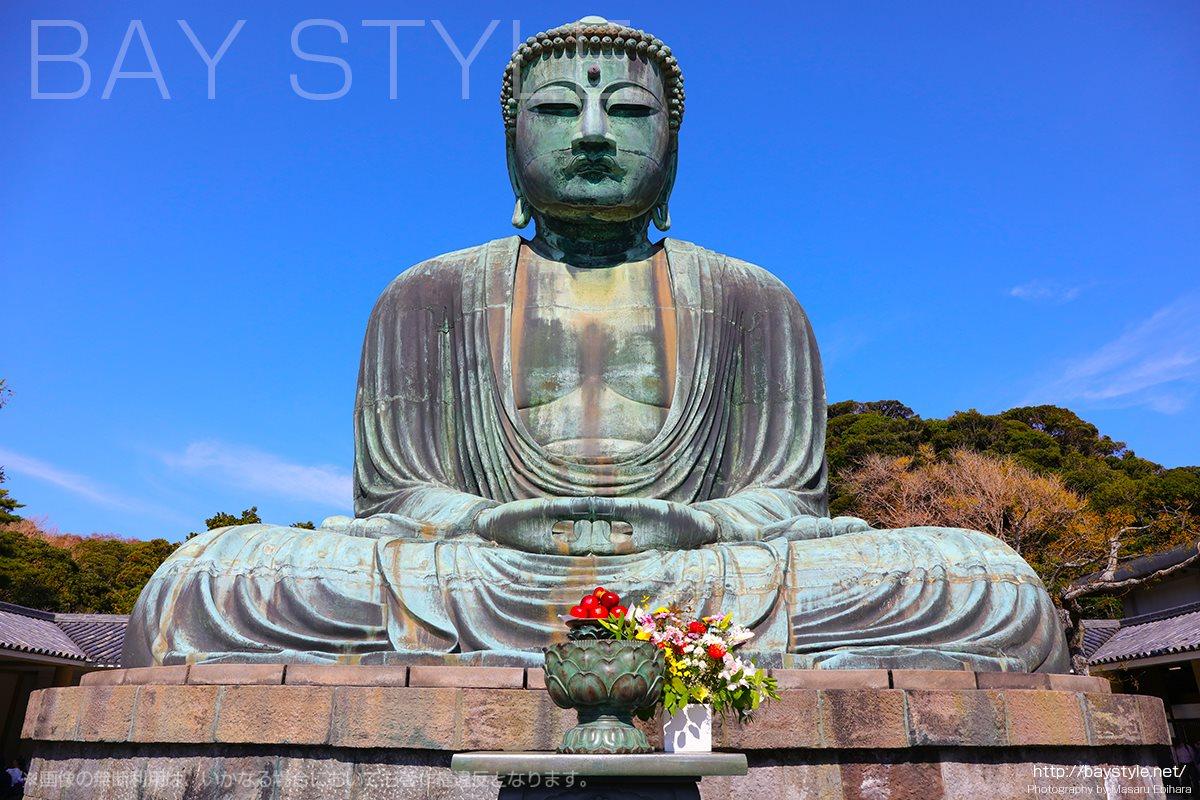 鎌倉の大仏(高徳院)のみどころや紅葉時期、おすすめ参拝時間