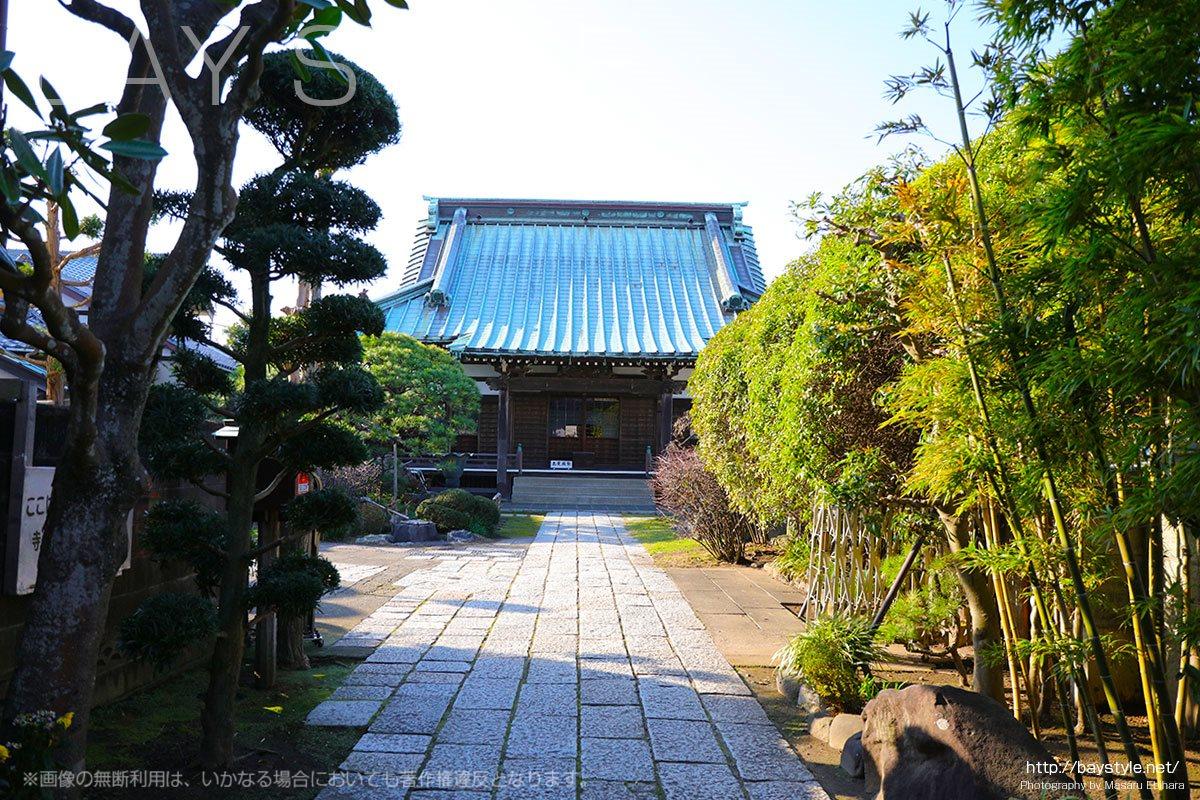 鎌倉九品寺の九品は上品、中品、下品と上生、中生、下生の意味