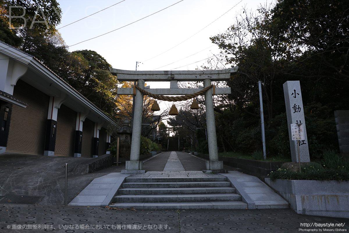 小動神社の鳥居