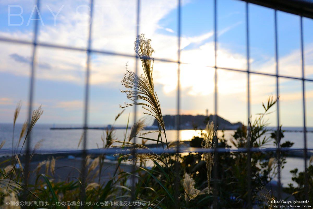小動神社境内の展望台からの眺め