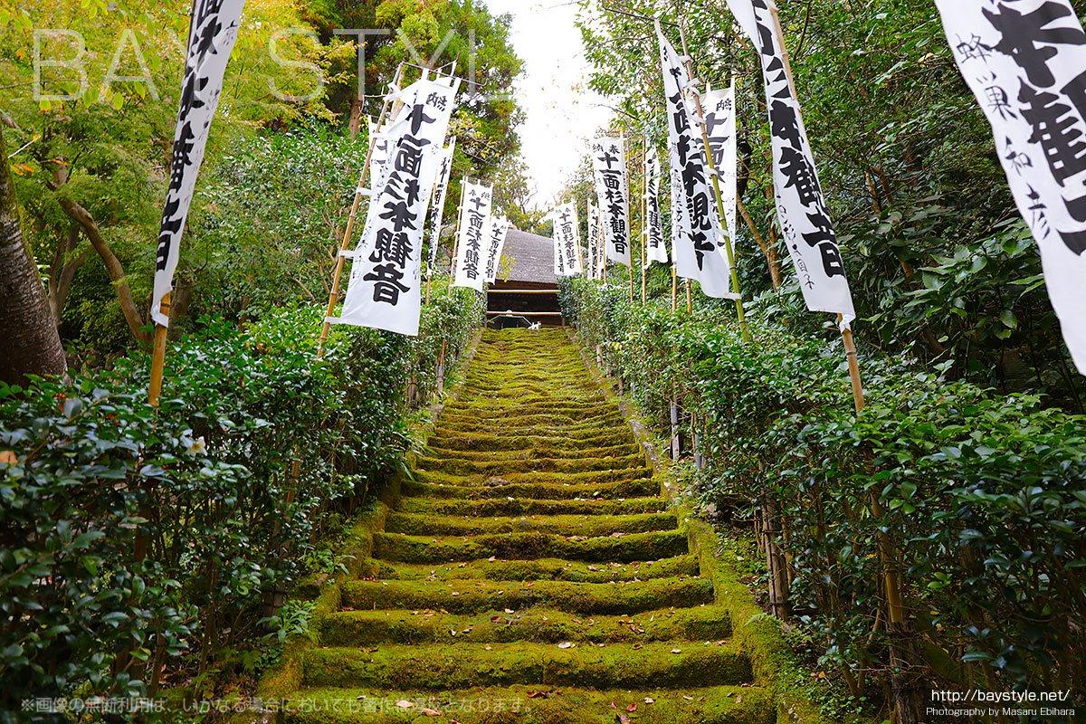 杉本寺の苔生す石段
