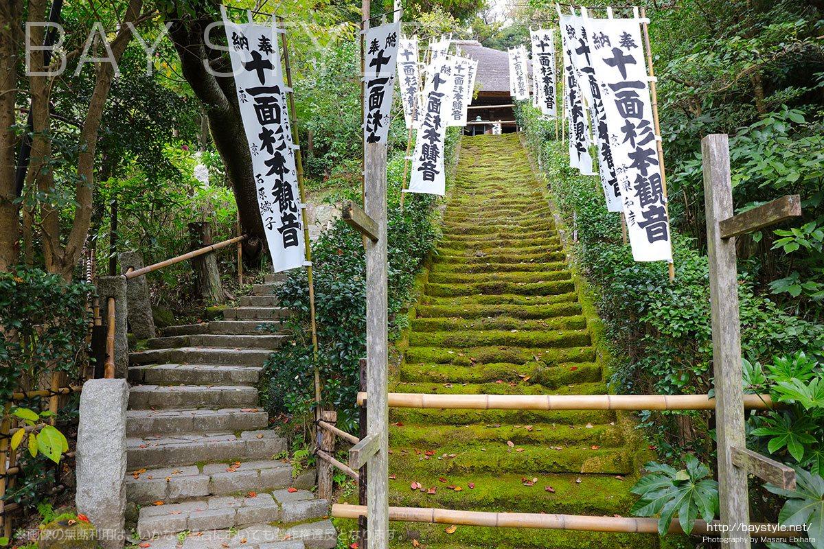 立入禁止の苔生す石段と上に登るための石段
