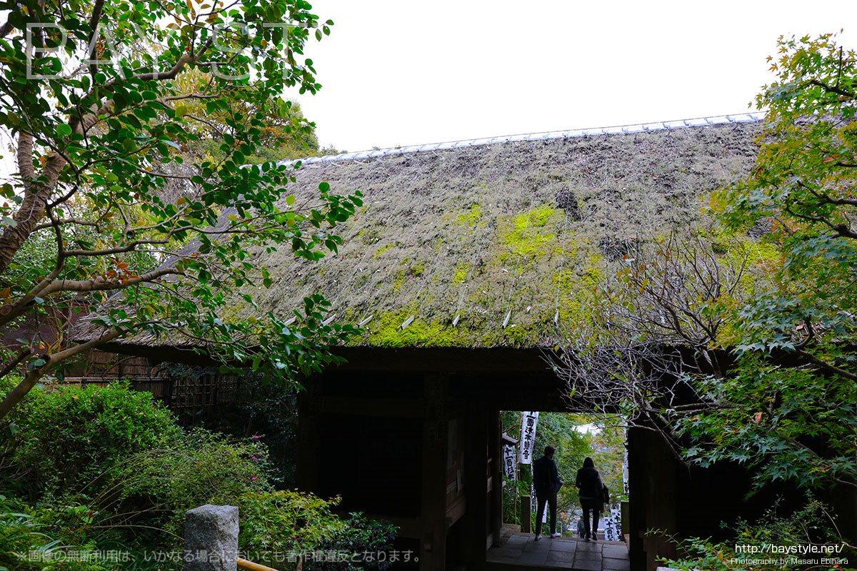 仁王門の藁葺き屋根