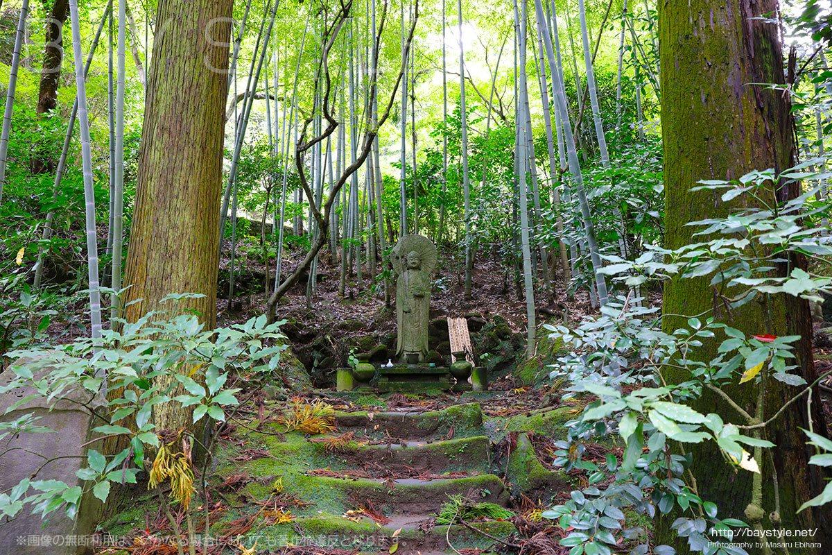緑豊かな東慶寺の墓苑