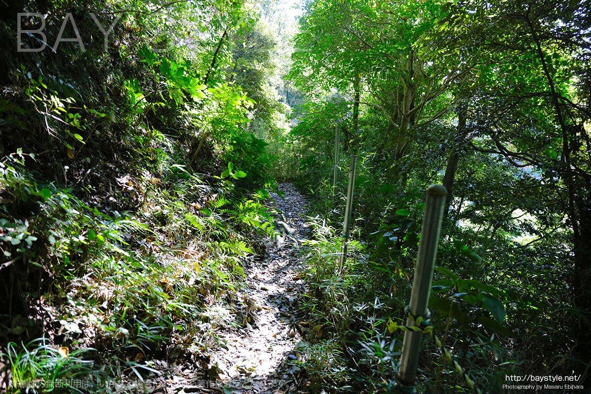 源氏山公園側へと抜けるかなり危険な山道