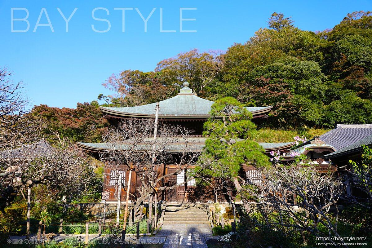 瑞泉寺は錦屏風のように美しい紅葉に囲まれる美しいお寺
