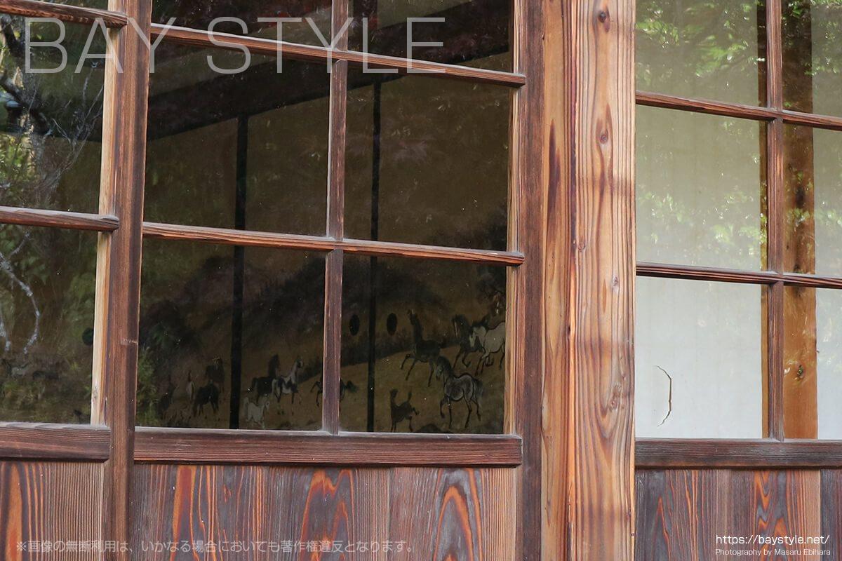 浄光明寺客殿の襖に描かれている馬の絵
