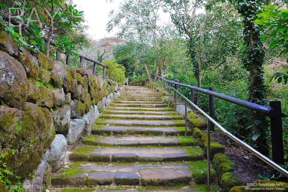 枯山水庭園の脇にある階段