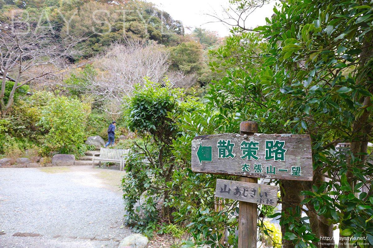 浄妙寺の散策路