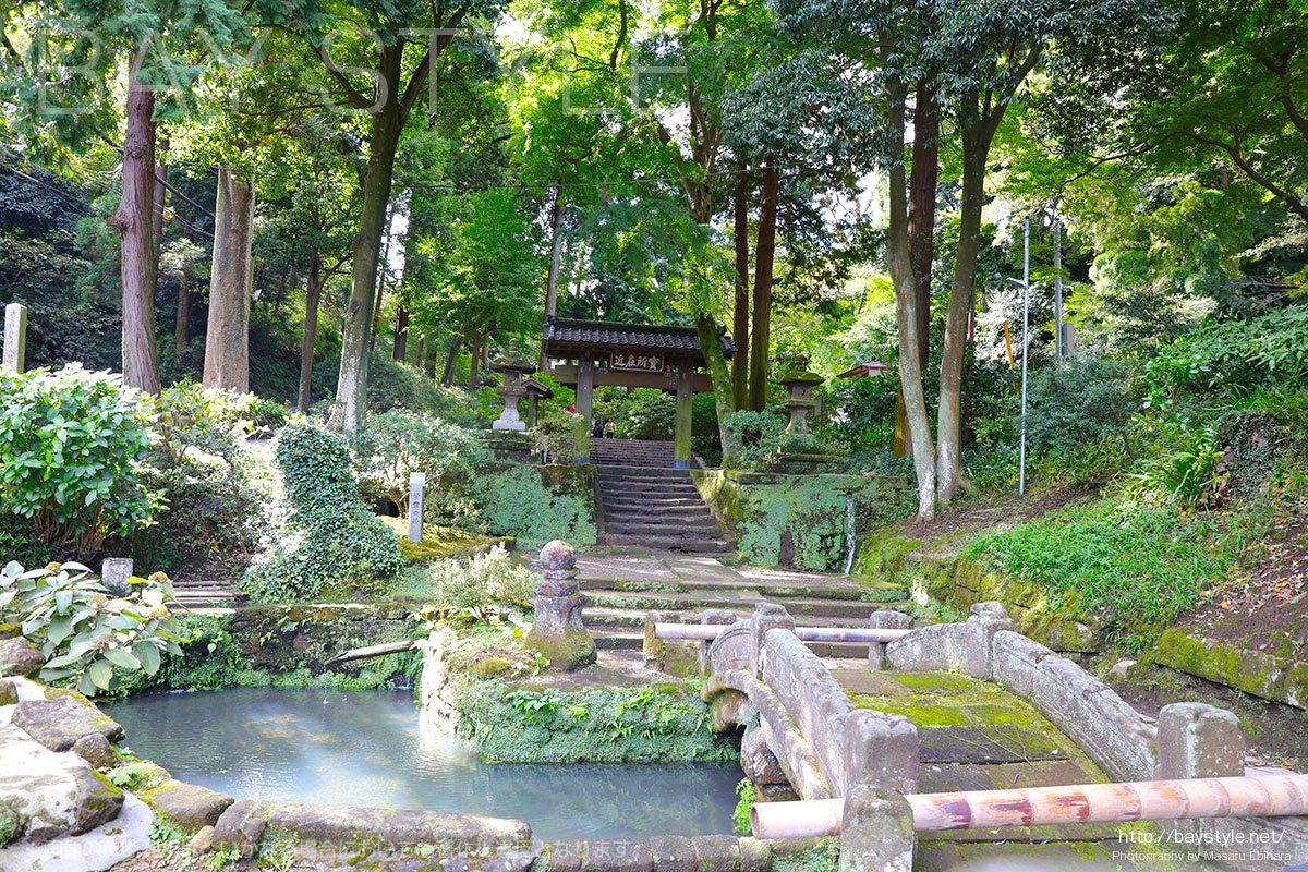 浄智寺の甘露ノ井