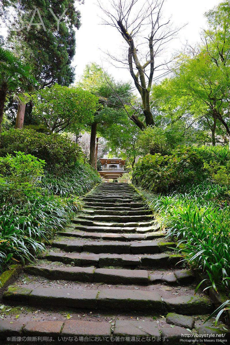 浄智寺の石段