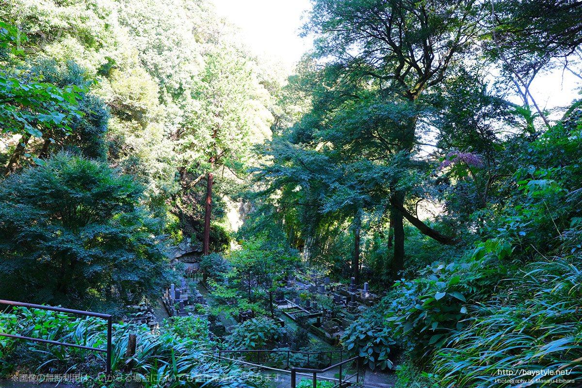 浄智寺の奥に広がる緑豊かな墓苑
