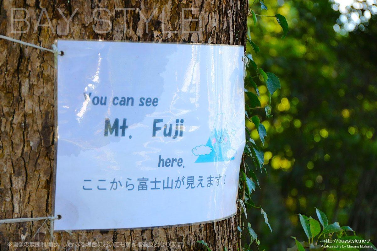 源氏山公園からの富士山
