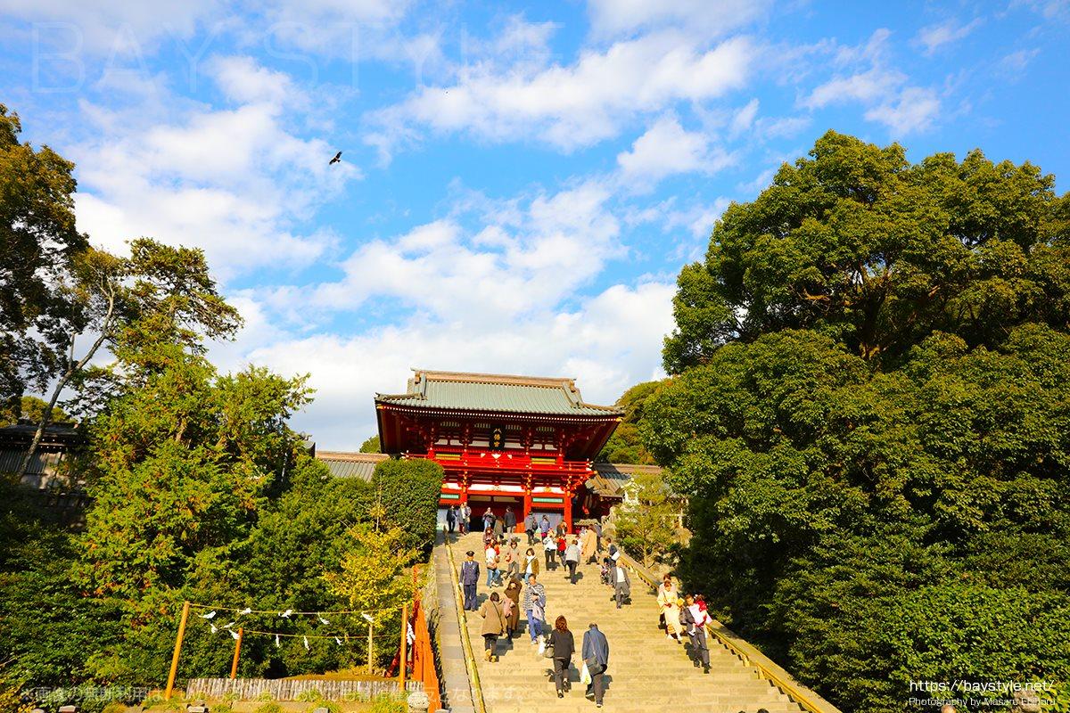 鎌倉で初詣といえば鶴岡八幡宮