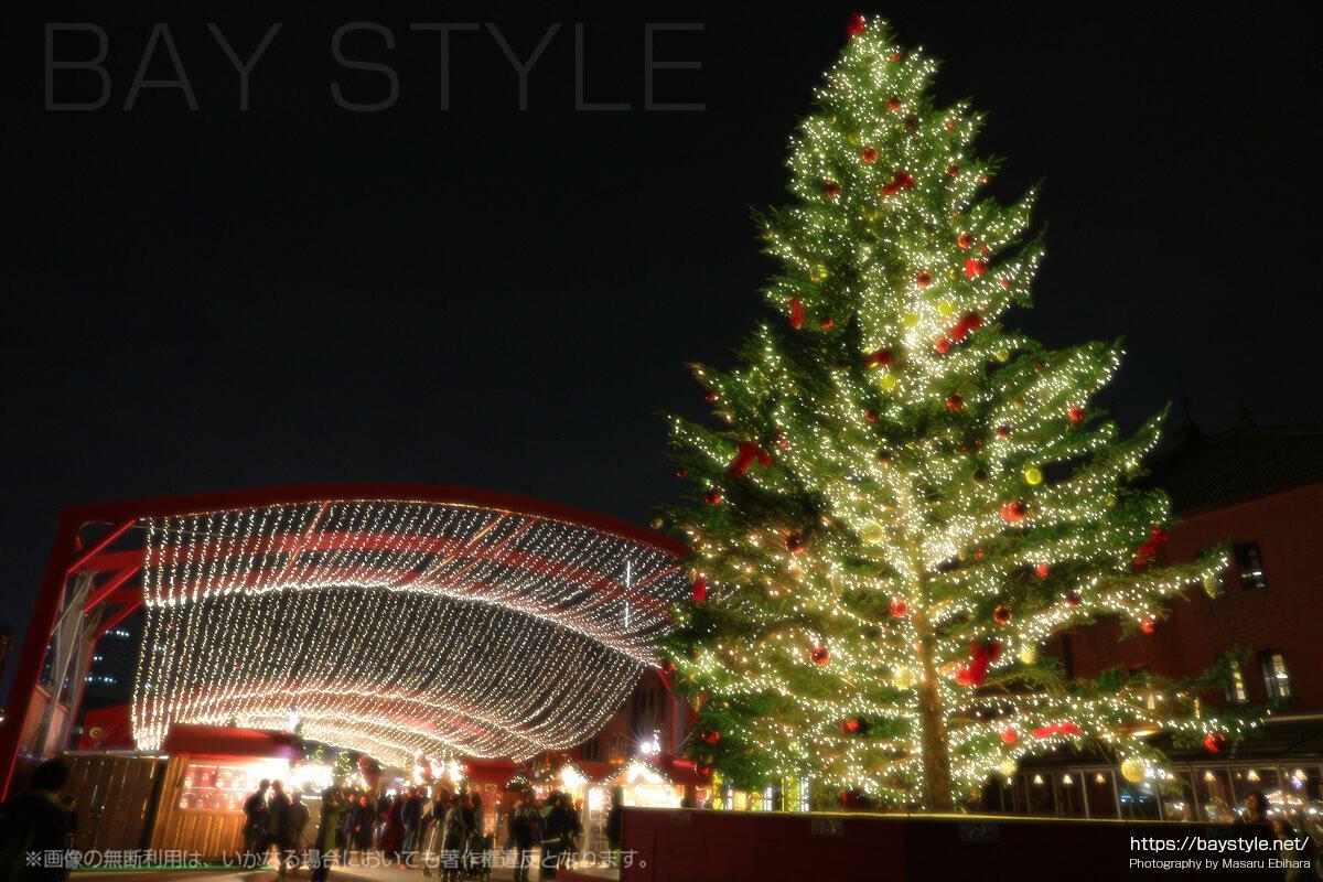 赤レンガ倉庫にクリスマスツリー