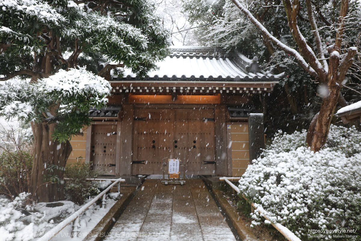 雪の日の報国寺
