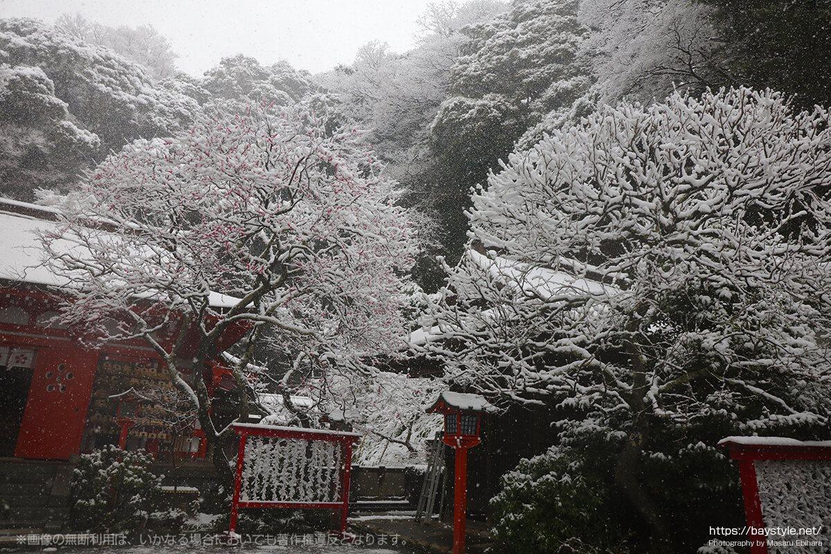 雪の日の荏柄天神社
