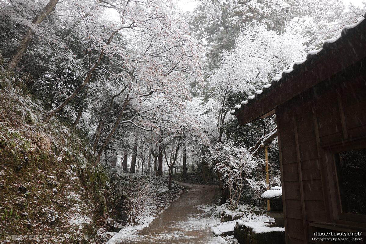 冬の覚園寺