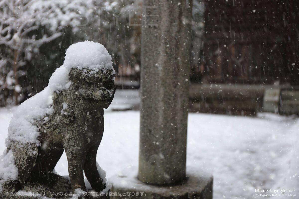 雪化粧した白旗神社