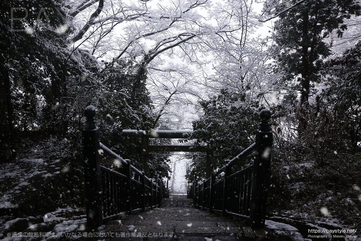 雪の日の源頼朝の墓