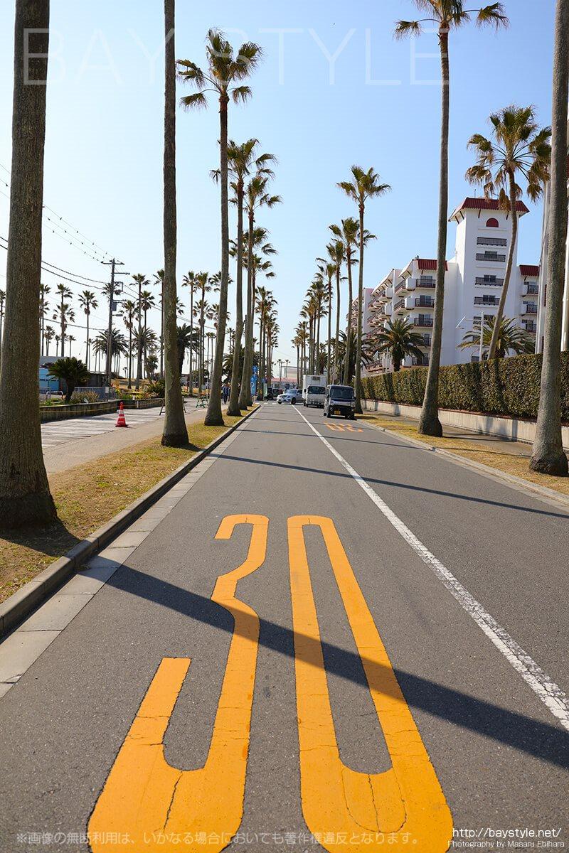 小坪海浜公園前の道