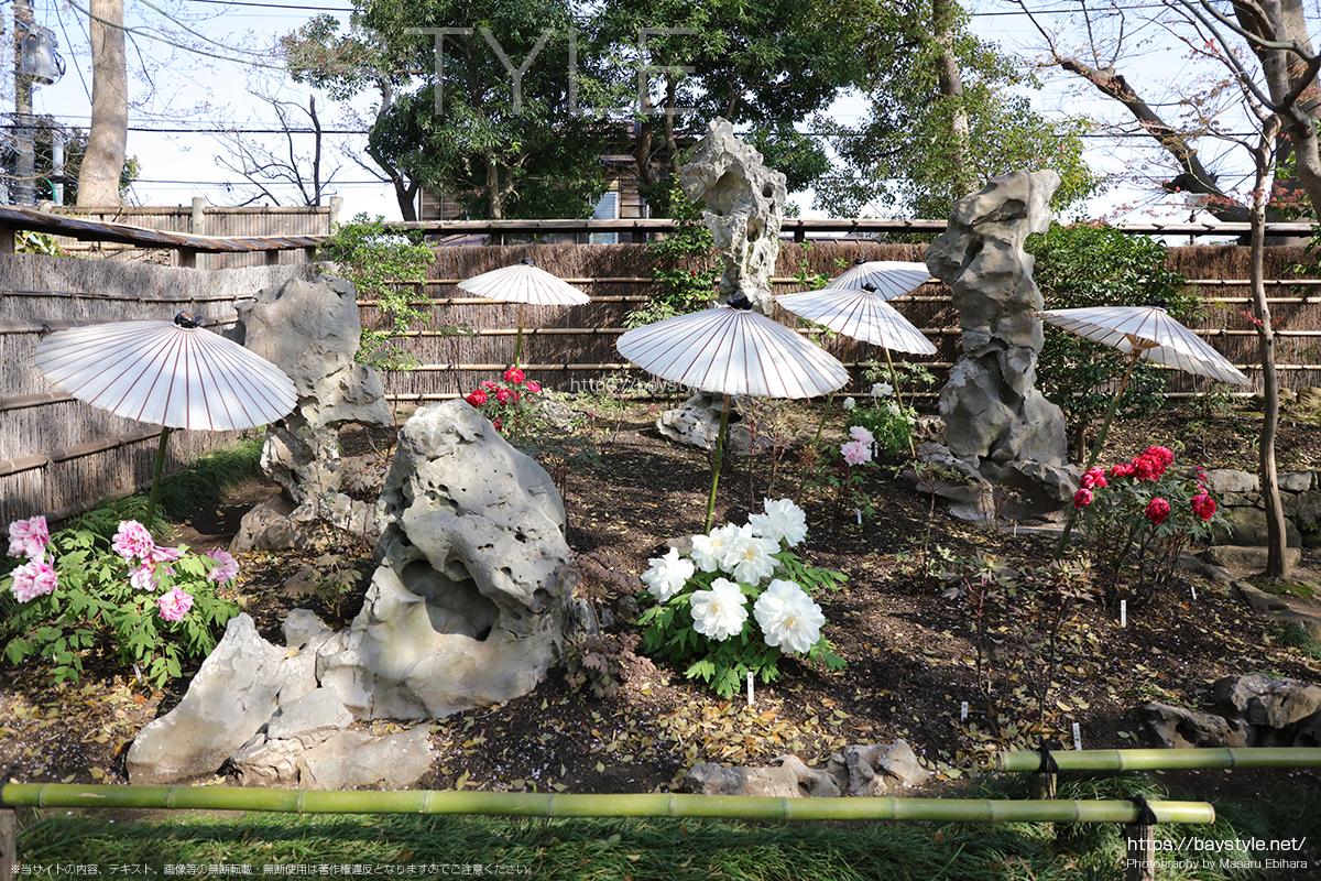 神苑ぼたん庭園の湖石の庭、太湖石