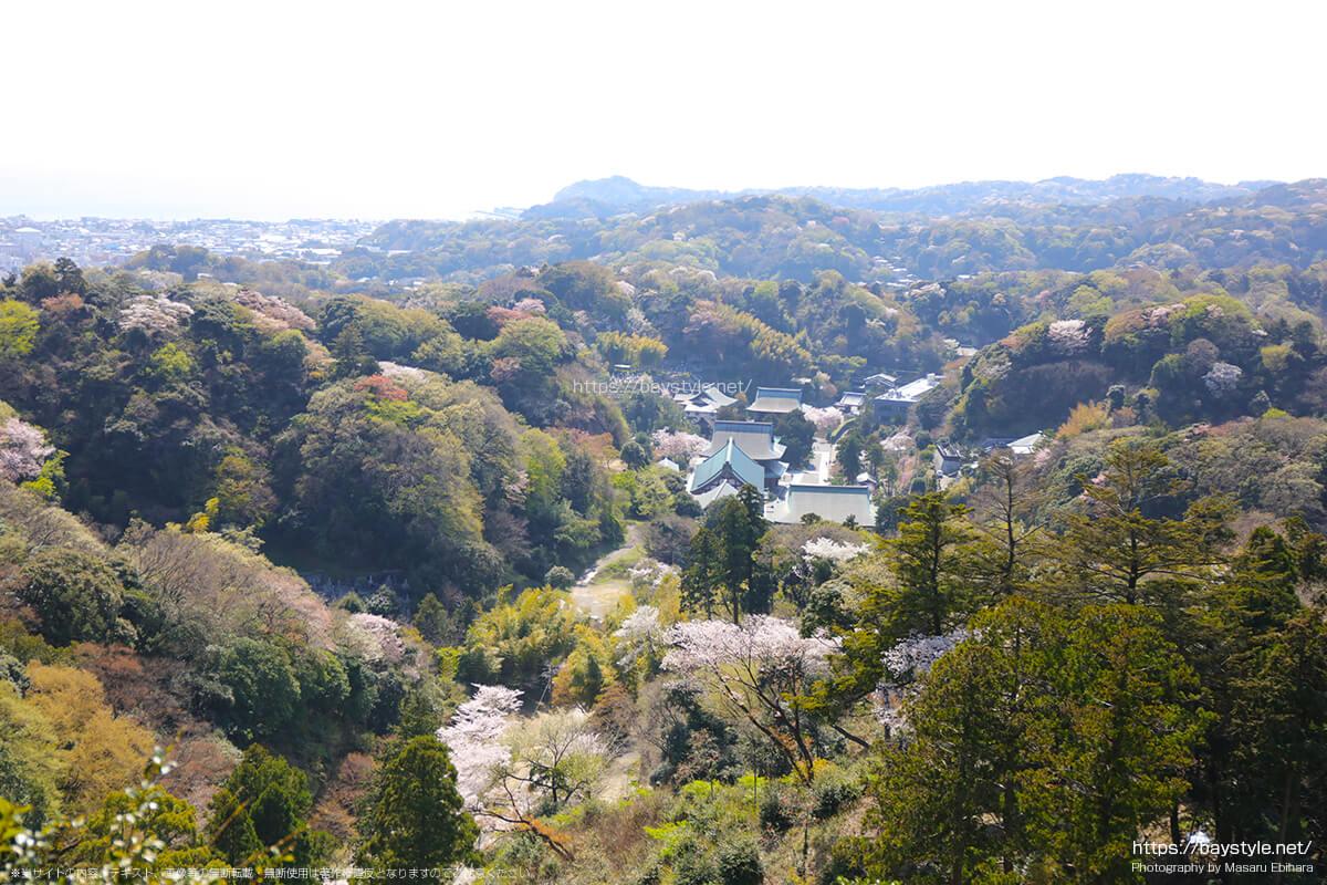 半僧坊から勝山獄展望台の間から見た鎌倉の景色