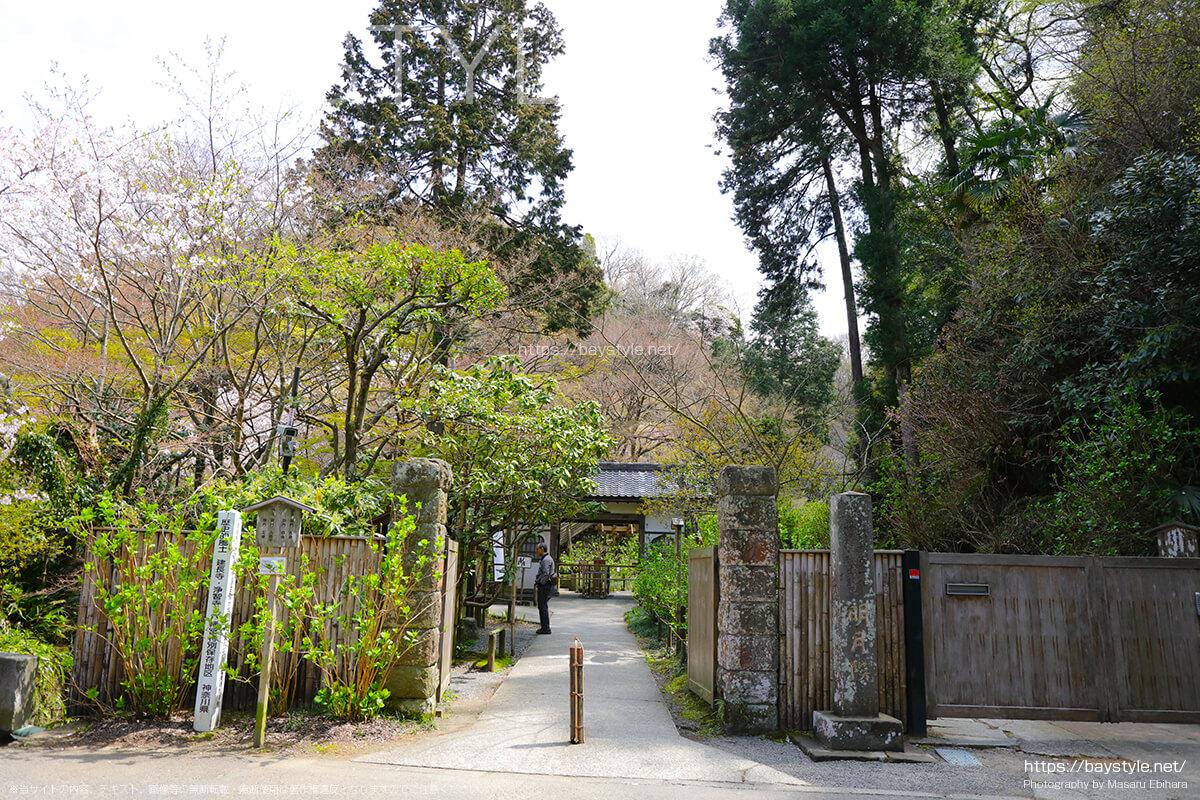 3月下旬の明月院の正面入口