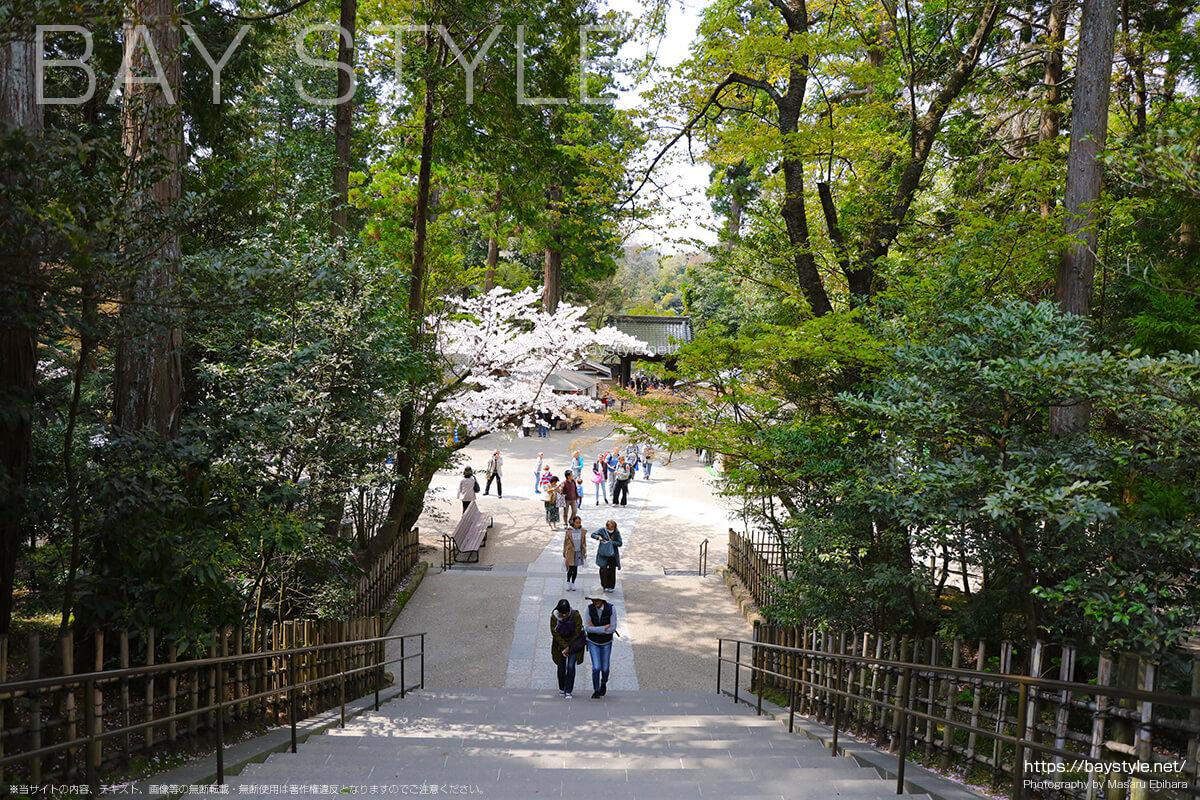 山門から円覚寺の受付方面