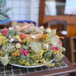お店の前にあったおしゃれな多肉植物の鉢