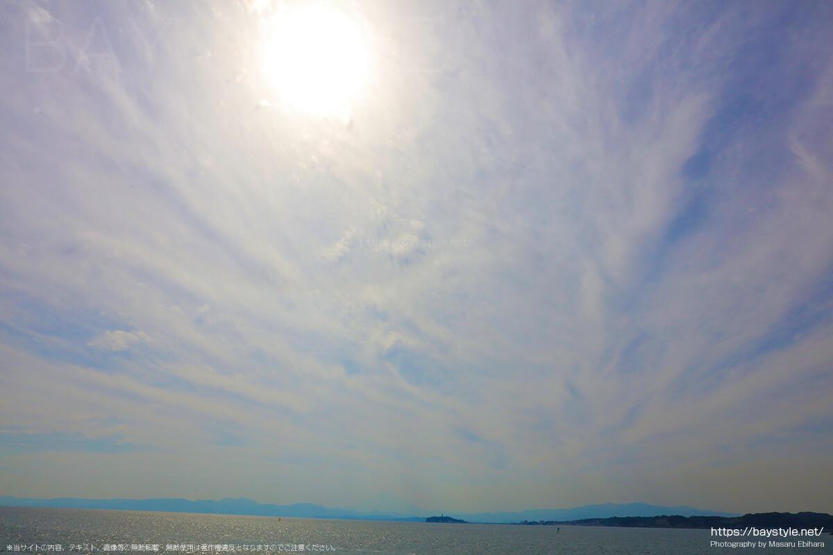 葉山港からの眺め