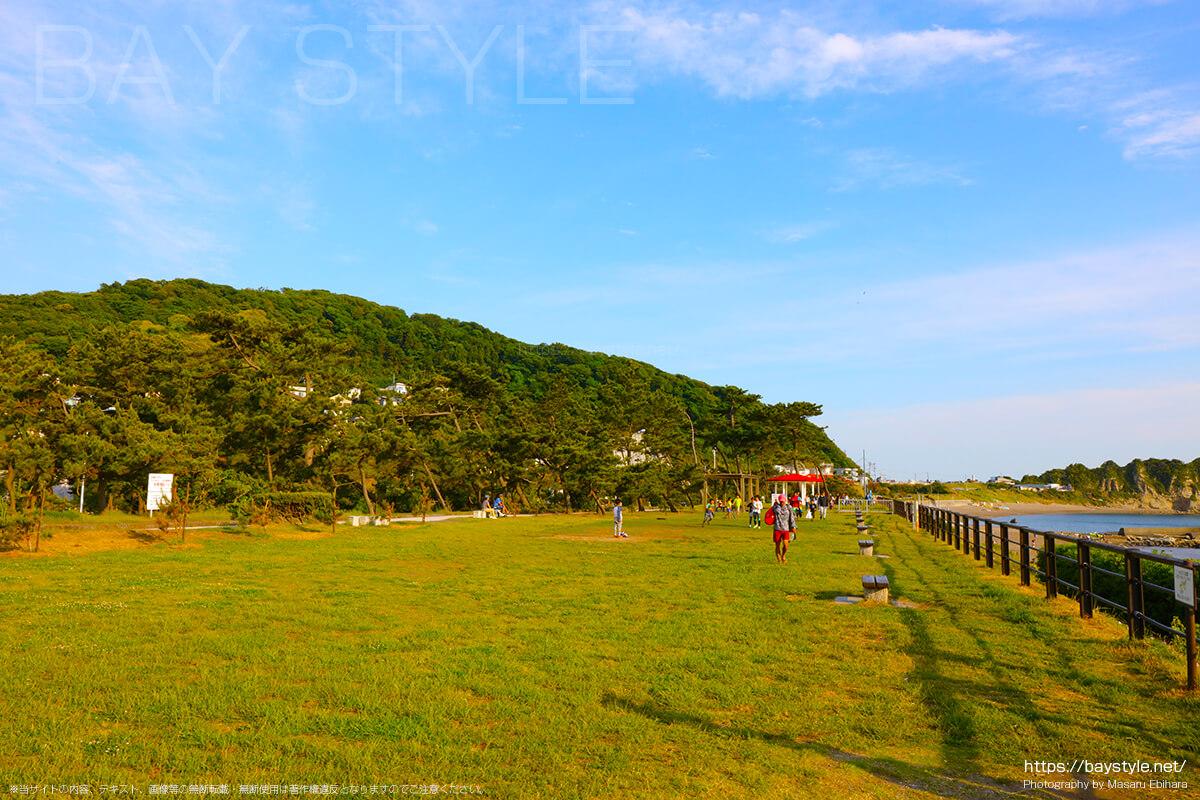 神奈川県立葉山公園について
